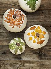 sütőtökös dekoráció levelekkel